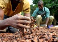 Két országon múlt a csokoládékedvelők következő éve